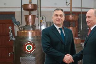 Oroszországban nyílnak meg a nemzeti italboltok
