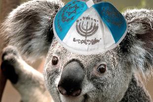Izrael átköltözik Ausztráliába