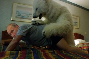 Saját medvéje rakta meg Vlagyimir Putyint