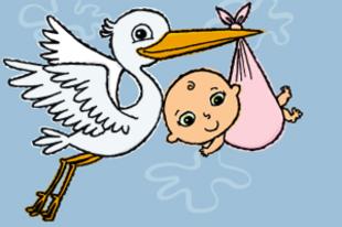 Brit tudósok: tényleg nem a gólya hozza