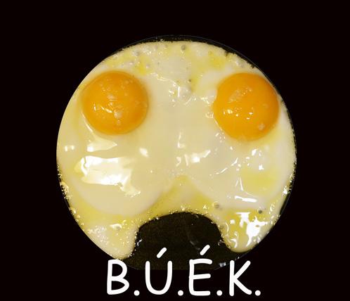 buek2018.jpg