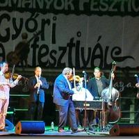 Győri anzix