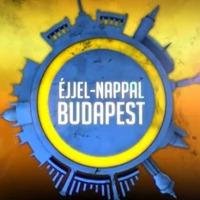Éjjel-nappal Budapest 1x61 - Mesterséges értelem