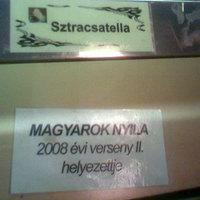 Szegeden bujkál a Magyarok Nyila!