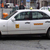 Taxishiéna fõtaxis mimikrivel