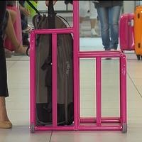 A bőrönd befér a reptéri kucliba, a füle nem - hopp 15 000 huf!