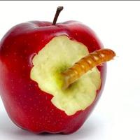 Gyötrelmes 4 hónappal ajándékozta meg Ádámot az Apple