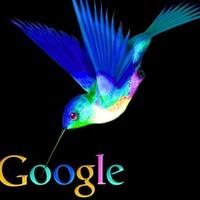 A Google Kolibri-algoritmusa