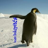 Google Pingvin 2.0