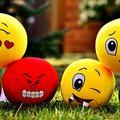 Valós és vélt sérelmek és az édes bosszú