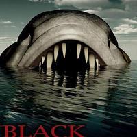 Black Lagoon poszter