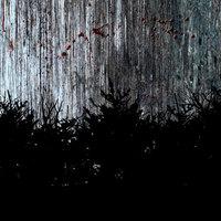 Poszter és előzetes egy újabb found footage horrornak