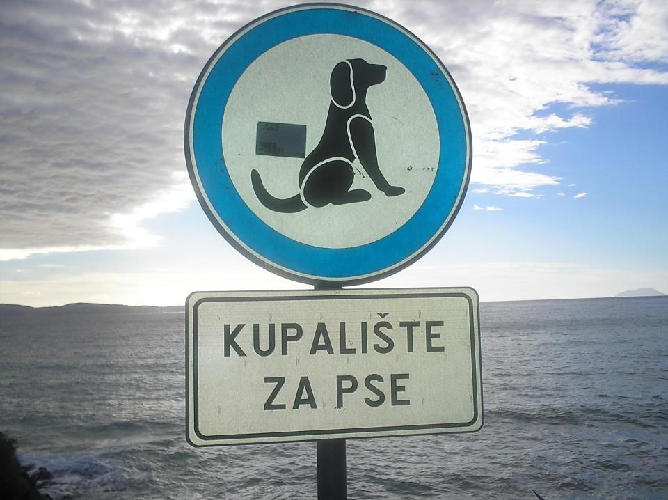 pla_a-za-pse-.jpg