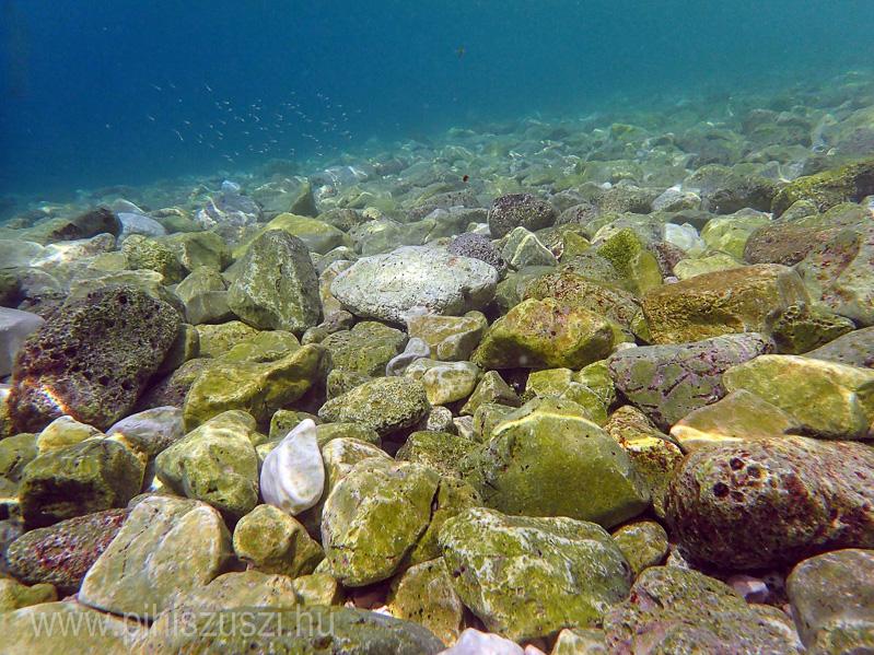 tenger2.jpg