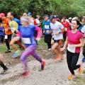 Terepfutóversenyekkel érkezett az ősz: 3 Vulkán terepfutás, I. Ősfenyves futás
