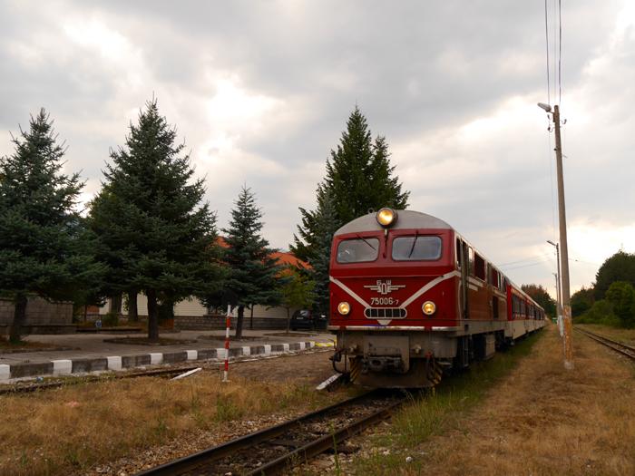 p1360260.JPG