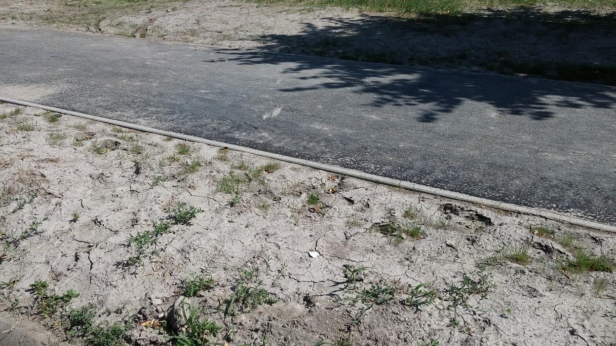 Kicsit ki van cserepesedve a talaj.