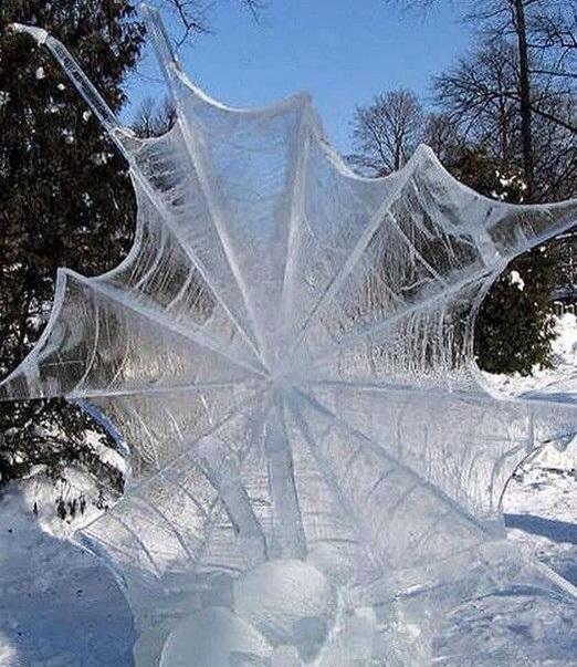 ice_spiderweb.jpg