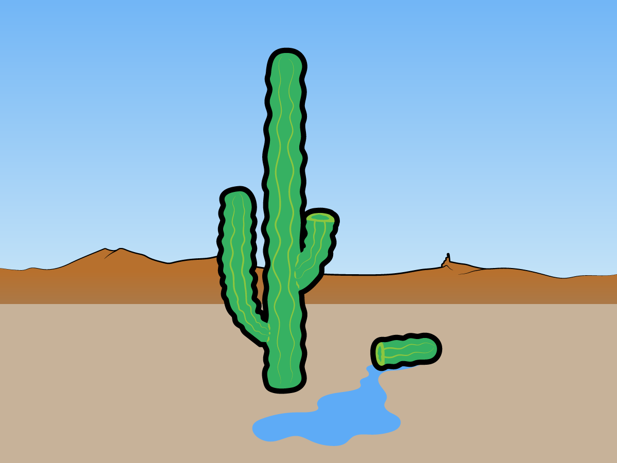 myth-the-fluid-in-a-cactus-can-save-you-from-dying-of-thirst.jpg