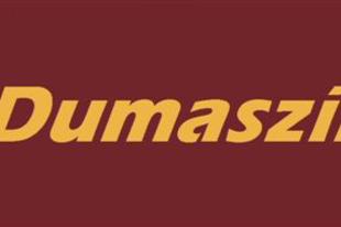 Megújul a Dumaszínház