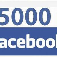 5000 követő a Facebook-on