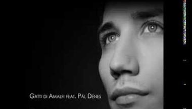 Pál Dénes - Brave New World (audio)