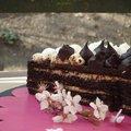 Krémes, csokis szülinapi torta: könnyen, gyorsan, glutén- és cukormentesen