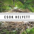 Mi a megoldás a CSOK helyett?