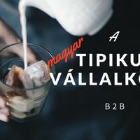 Milyen a tipikus vállalkozói réteg Magyarországon? [B2B]