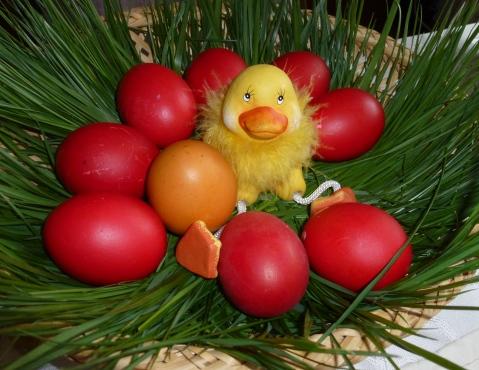az elmaradhatatlan piros tojás, már várom, h. jövőre Picúrral együtt fessük