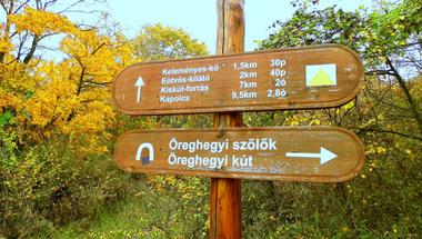 A legjobb kirándulóhelyek a Balaton környékén