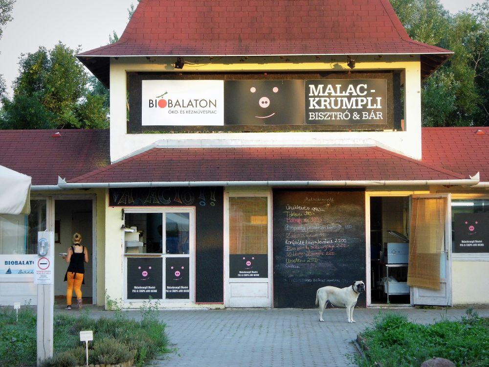 malac6.jpg
