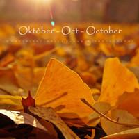 Indafotó háttérképek: 2015. október