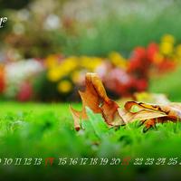 Indafotó NAGYKÉPES háttérképek: október