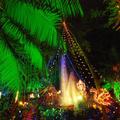 Onam - nyakunkon a fesztivál