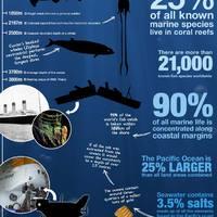 Az óceán mélységei