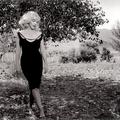 Marilyn Monroe - és Inge Morath