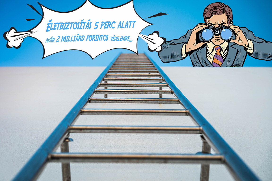 ladder_cover.png