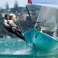 Szöcskék Auckland vizein