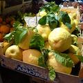 A sorrentói citrom és az eredeti limoncello esete