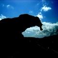 Castelsardo: Rocco d'Elephante