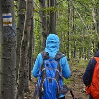 Megújulnak a túrajelzések Észak-Magyarországon