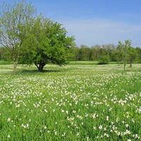 10 romantikus, tavaszi kirándulóhely