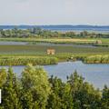 Új tanösvény a Tisza-tavon