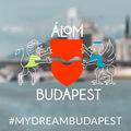 Több Duna és cargobringa flotta lenne ÁlomBudapesten