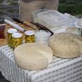 """Sajt-farmok"" nyomában a Balaton régióban"