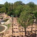 Ezt is kipróbáltuk: Extrém Kalandpark Balatonfüred