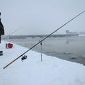 Itt a 2015-ös horgászrend