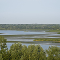 A folyó áll, a tó folyik – csatornák a Tisza-tónál