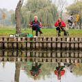 Mi a különbség: téli és nyári vízállás a Tisza-tavon